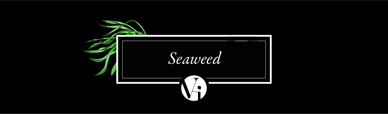 black and white rectangle showing seaweed